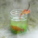 swamp-juice-halloween-recipe-photo-260-FF1009TOTMA01